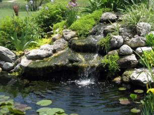 Okrasné jezírko v zahradě